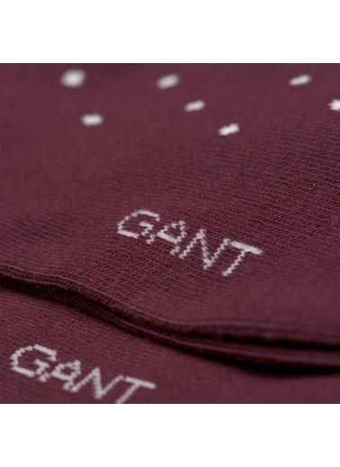 Gant Çorap Bordo